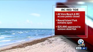 High levels of red tide detected in Indian River County beaches