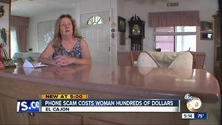 Phone scam costs woman hundreds of dollars - Video