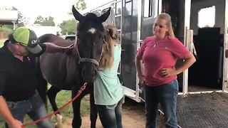 Girl Gets Surprise Reunion With Her Horse After 4 Years Apart - Video