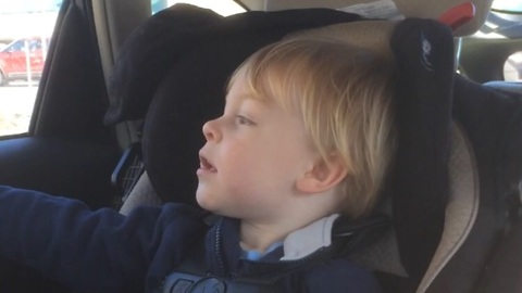 2 year old gets nervous when he sees a bug in the car