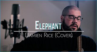 Cole Woodruff. Elephant. (Acoustic Cover) #UnderTheInfluenceSeries