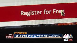Some concerned over emotional support animal system - Video