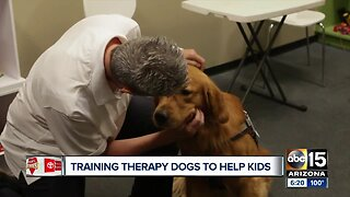 Woman helps people access therapy dogs