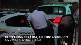 Shots fired during armed carjacking in Tampa | Digital Short - Video