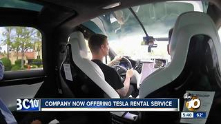 Company offering Tesla rental service - Video
