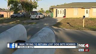 Man tries to return lost dog, gets robbed - Video