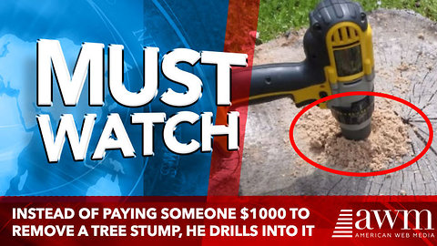 Instead Of Paying Someone $1000 To Remove A Tree Stump, He Drills Into The Center And Pours Oil