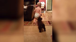 Cuteness Overload: Baby Vs. Puppy Tug Of War - Video