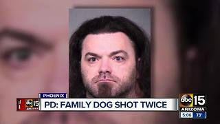 Phoenix man arrested after shooting family dog