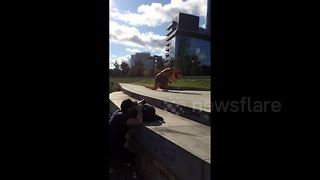 Just a T-rex skateboard fail - Video