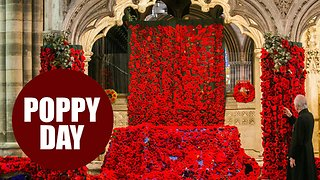 Exeter Cathedral covered in 34,000 poppies in Remembrance Day tribute - Video