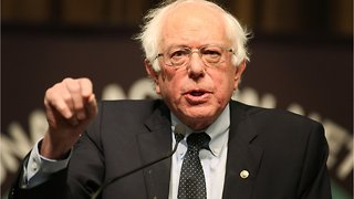 Bernie Sanders Draws Personal Contrast With Trump