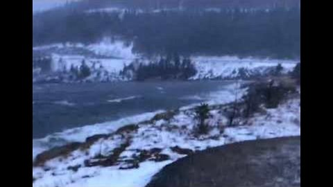 Snow and Hurricane-Force Winds Pummel Newfoundland