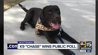 Scottsdale police name new K9 officer - Video