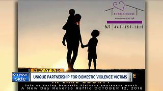 First of its kind partnership in Lake County helps domestic violence victims