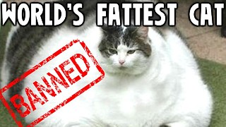 10 Banned World Records - Video