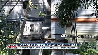 Widespread flooding near Withlacoochee River