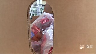 Seniors overjoyed by monthly groceries from Feeding Tampa Bay volunteers