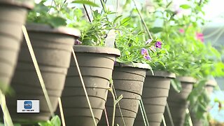 Homeowners getting started on yard work can use curbside pick up