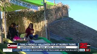 Murray Family Farms hosts October Fun Fest going now until Halloween - Video