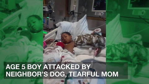 Age 5 Boy Attacked by Neighbor's Dog, Tearful Mom Fears She'll Lose Unconscious Son
