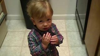 Toddler Boy Steals Brownies From The Kitchen | Funny Kid Fails - Video