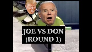 Joe Biden vs Donald Trump (ROUND 1)