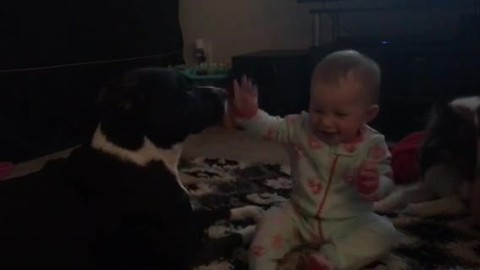 Baby enjoys sweet moment with her favorite doggy