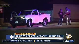 Search for driver in deadly hit and run - Video
