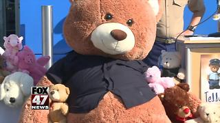 Teddy Bear Posse campaign launches in Mid-Michigan - Video