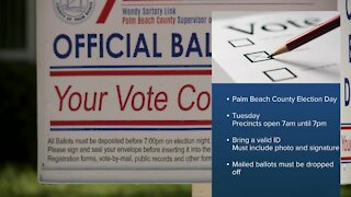 19 different cities and towns holding municipal elections in Palm Beach County