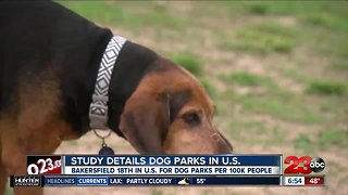 Bakersfield one of the top cities for dog parks