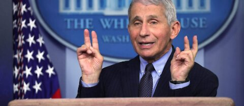 DML slams Fauci for his new warning to parents