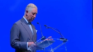 Prince Charles Blames Syria War On Climate Change - Video