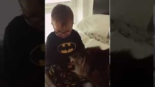 Cute Scottish Boy Bonds With His Cat - Video