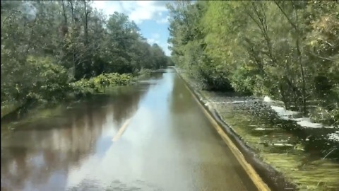 Texas Animal Sanctuary Heads to Wilmington to Help Florence Rescue Efforts