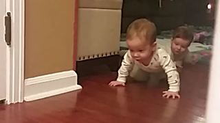 Babies Like To Follow Their Mother Everywhere - Video