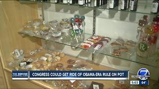 Congress could get rid of Obama-era rule on pot - Video