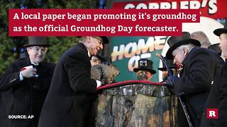 Punxsutawney Phil sees his shadow | Rare News - Video