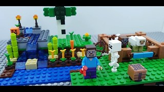 Minecraft Steve Building Small Farm  - Video