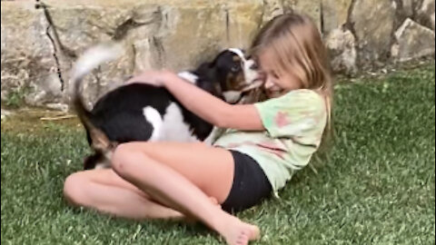 Puppy plays cutest game of tag with sweet little girl