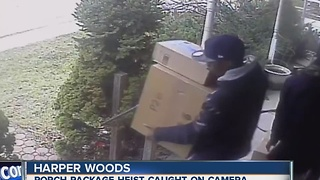 Men caught on video stealing packages from porches in Harper Woods - Video