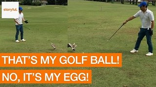 Golfer Interrupted by Angry Birds Protecting Mistaken Egg - Video