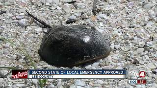 Lee County Commission approved a second State of Emergency