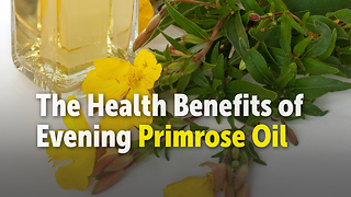 The Health Benefits of  Evening Primrose Oil - Video