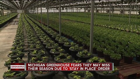 Michigan Greenhouse fears they may miss their season due to 'stay in place' order