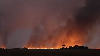Wildfire Burns Over 5,500 Acres in Fort Lauderdale - Video