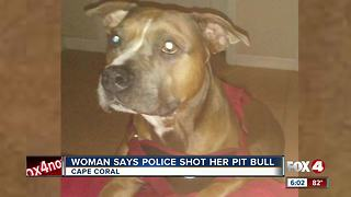 Woman Says a Deputy Shot her Pit Bull - Video