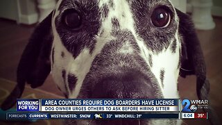 Area counties require license for people boarding dogs through apps