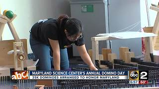 Domino Day at Maryland Science Center - Video